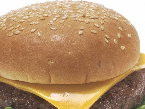 CHEESE BURGER NATUUR